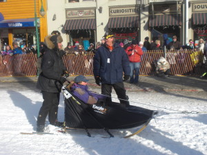 During the parade, also known as the ceremonial start, mushers take their teams through the streets of Anchorage, along with paying customers.